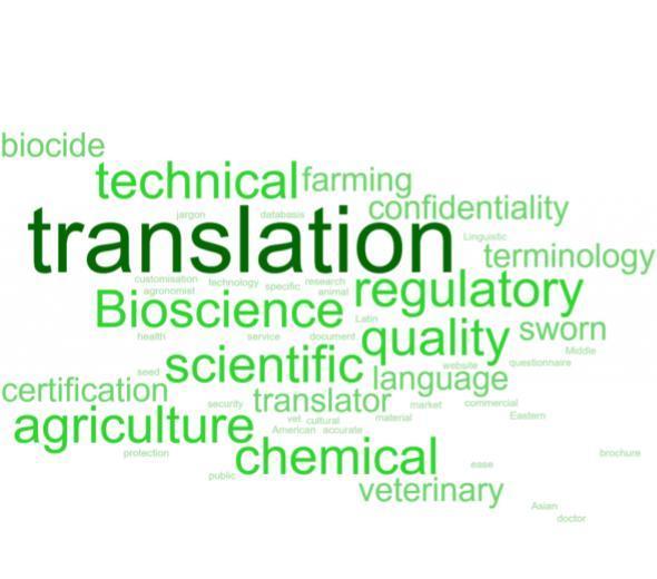 Types de traduction et de contenu wordcloud